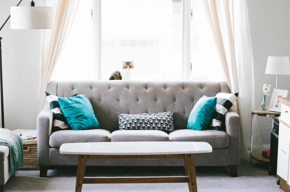 wd40 salas y alfombras